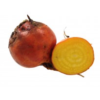 Organic Beetroot Golden Globe