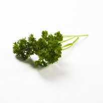 organic fresh parsley