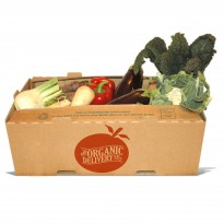 Big Seasonal Salad Box