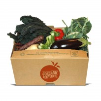 Small Seasonal Salad Box